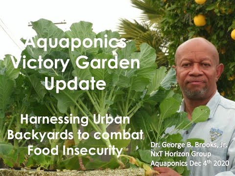 12:4:2020 COMBATING FOOD INSECURITY - UPDATE AQUAPONICS VICTORY GARDEN GROWING FOOD IN A PANDEMIC