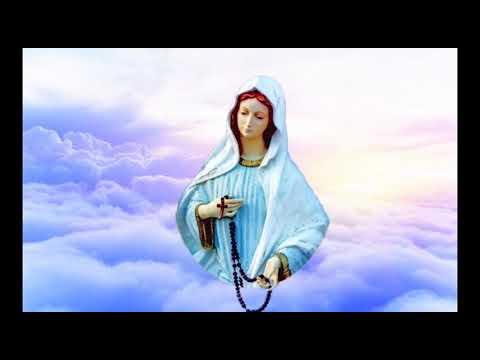Novena da Gestação de Nossa Senhora - 25 de maio
