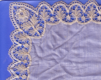 Silk lace - more in view