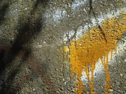 Untitled (under the bridge)
