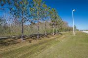 76 Acres in South Orlando : $5 Millones en Dolares.