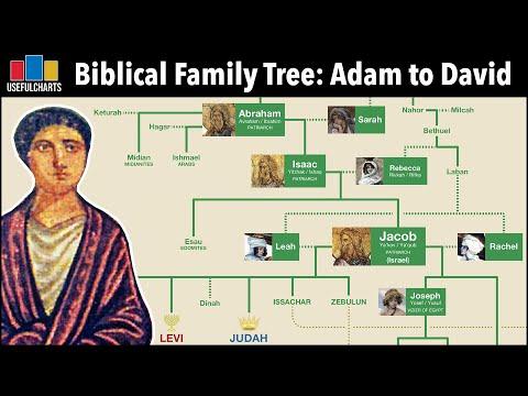 Biblical Family Tree   Adam & Eve to King David