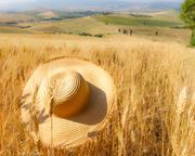 Val d' Orcia 1