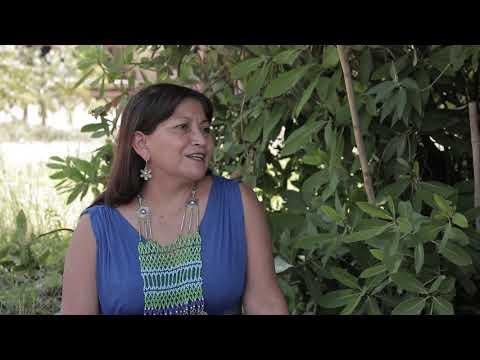 Nütram: conversaciones con la historia mapuche. Elisa Loncon