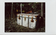 The mistery box