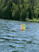 loon sign 2