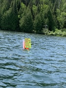 loon sign 1