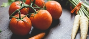 Growing organic vegetables: getting started