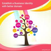 Best Domain Registrar In India - Sathya Technosoft