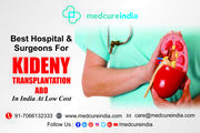 Kidney Transplant Treatment