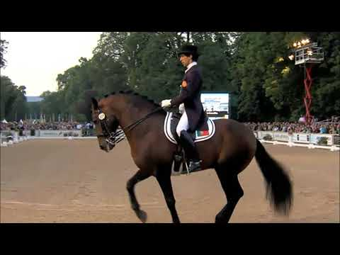The Original Rave Horse At The London Olympics In 2012