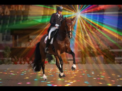 The Rave Horse: The TikTok Famous Dressage Horse From Tokyo & The Full Grand Prix Freestyle