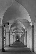 """la fine del """"Tunnel"""""""