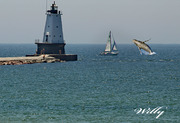 Having a whale of a time in Ludington Mi.