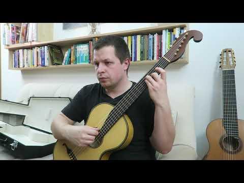 Fernando Sor - 24 studies, op. 35 - No. 22 Allegretto in B minor