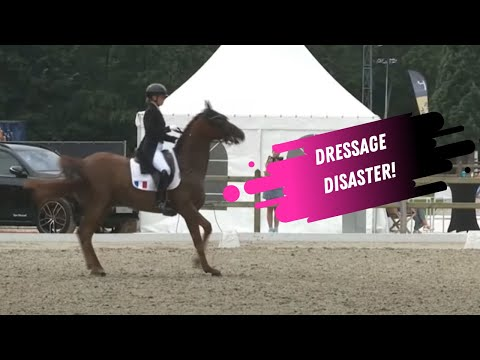 Dressage Disaster: Deodoro Destroys The Dressage Ring!