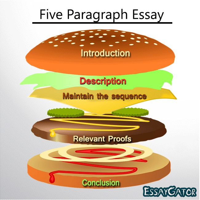 The structure of the 5 paragraphs of the essay