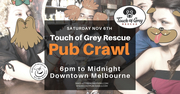Touch of Grey Dog Rescue Pub Crawl Downtown Melbourne Saturday, Nov. 6th, 5 pm to midnight