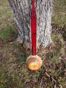 Gourd banjo #2, finished.