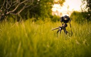 16576-canon-camera-in-the-grass-2560x1600-photography-wallpaper