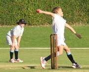 Cricket vs WPPS