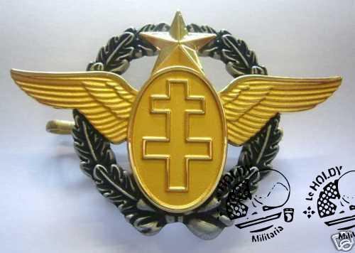 FAFL Pilot insignia
