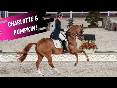 Charlotte Dujardin & Pumpkin - Grand Prix Special - European Dressage Championships