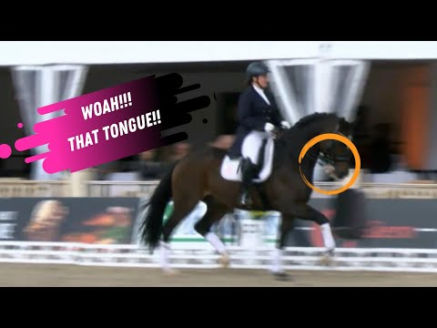 Woah! Check Out That Tongue Waving At The Crowd In The Grand Prix Dressage Freestyle Award Ceremony!