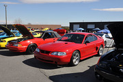 All Mustang & Ford Show -Buford, GA