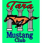 Tara Mustang Club Gene Evans Ford mustang Show Union City, Ga.