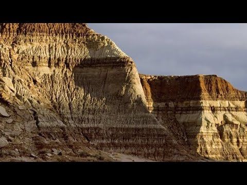 Rock Strata, Fossils and the Flood 🌊 with Dr. Andrew Snelling