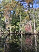 Scenic North Carolina in The Fall….