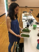 *Grow Your Own Microgreens