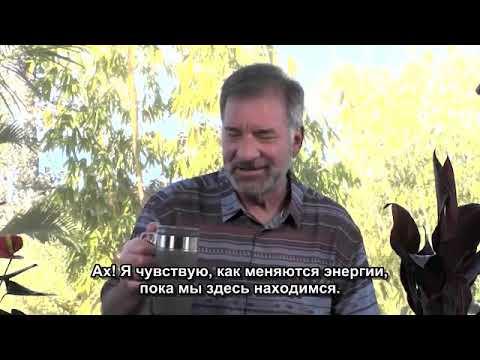 "ʘ  Адамус. Серия ""Emergence"" Шоуд 6"