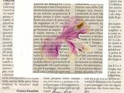 Ritagli di un fiore nel tempo