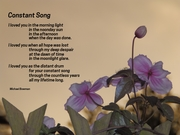 Constant Song (2)