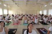 Hatha Yoga Courses India