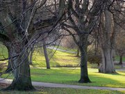 Meeting of Friends of St Andrews Park