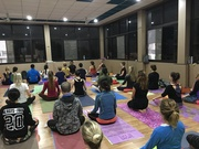Multi Style Yoga Teacher Training in Rishikesh India