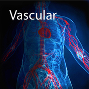 Hands-On Carotid and Peripheral Vascular Imaging, Including Vascular Access 2015