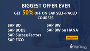 """LEARN SAP BODS SELF PACED TRAINING- SAP BODS TRAINING VIDEOS at very low cost limited offer HUrry UP-<a href=""""http://WWW.BIGCLASSES.COM"""">WWW.BIGCLASSES.COM</a>"""
