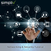 Introduction to Programming   Simpliv