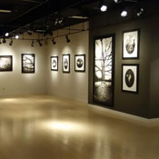 McMaster Gallery Call for Exhibition Proposals