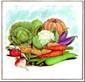 Vegetable Open House