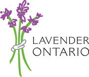 Ontario Lavender Association Conference: The Business of Lavender
