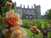 Ag-venture tour to Ireland