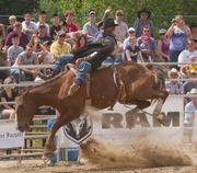 Exeter RAM Rodeo: 2014 Ontario Rodeo Tour Schedule.