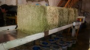 Hay Dryer Demo and Member Update