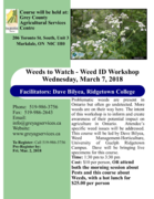 Weeds to Watch – Weed ID Workshop ¬- 2 CM CEUs available