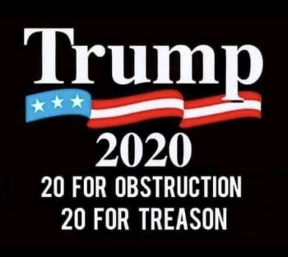 TRUMP 2020 [mock campaign sign] 20 for obstruction, 20 for treason
